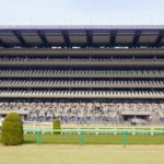 NHKマイルカップの過去の結果! 10年分のデータを紹介