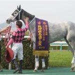 阪神牝馬ステークスの過去10年の結果!データ!成績一覧&動画まとめ